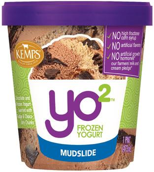 Yo2 Frozen Yogurt Mudslide  (pint)